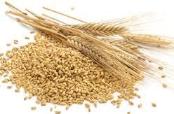 cereali 3